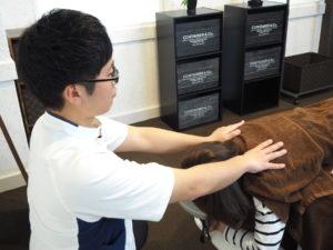 勝川整体サロン エール 肩こり 頭痛 首